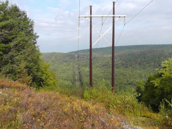 Vista_through_the_power_lines-001.jpg